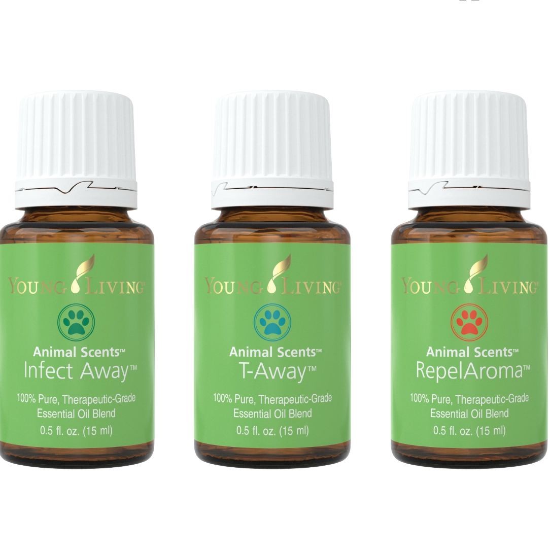 animal scents young living essential oils